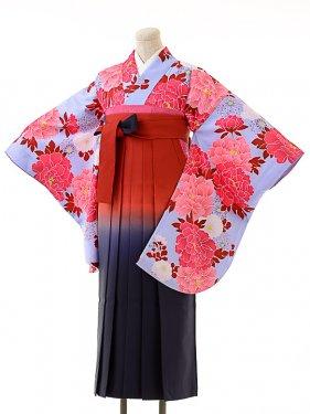 女袴s153京かいらし薄青紫/エンジぼかし袴
