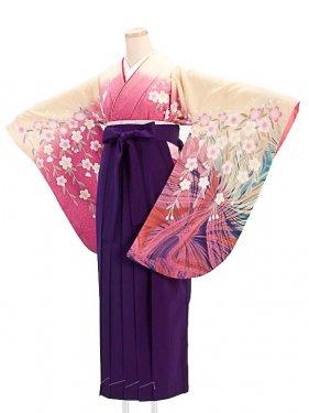 女袴s066ピンク×ベージュ地に枝垂れ桜/紫無地