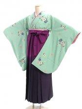 女袴s019緑地に桜/紫ぼかし
