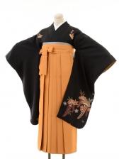 正絹女袴s122黒地に藤/からし色無地袴