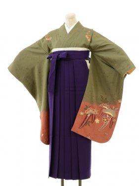 正絹女袴s124うぐいす色地に藤/紫無地袴