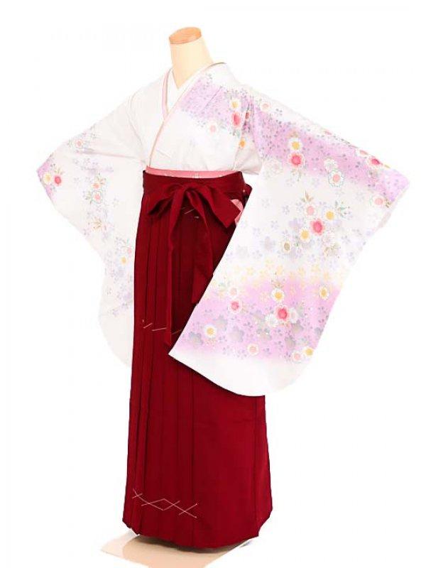 女袴s069白地に紫ぼかし花/エンジ無地