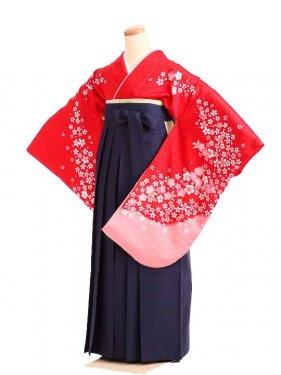 女袴s177赤地に姫桜/紺無地袴
