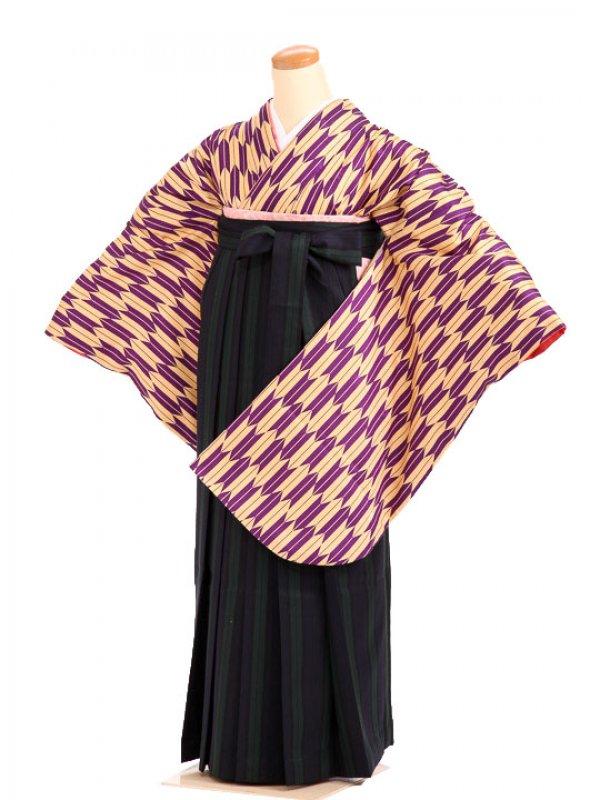 女袴s045紫黄矢羽/紺×緑 ストライプ