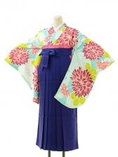 女袴s158京かいらしアクアグリーン/青縞袴