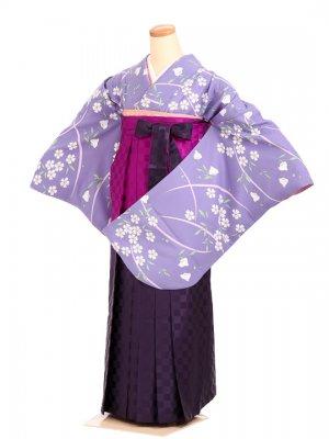 女袴s037薄紫地に千鳥桜/市松パープルぼかし