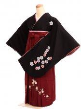 女袴s046黒地に桜/エンジ桜刺繍入り