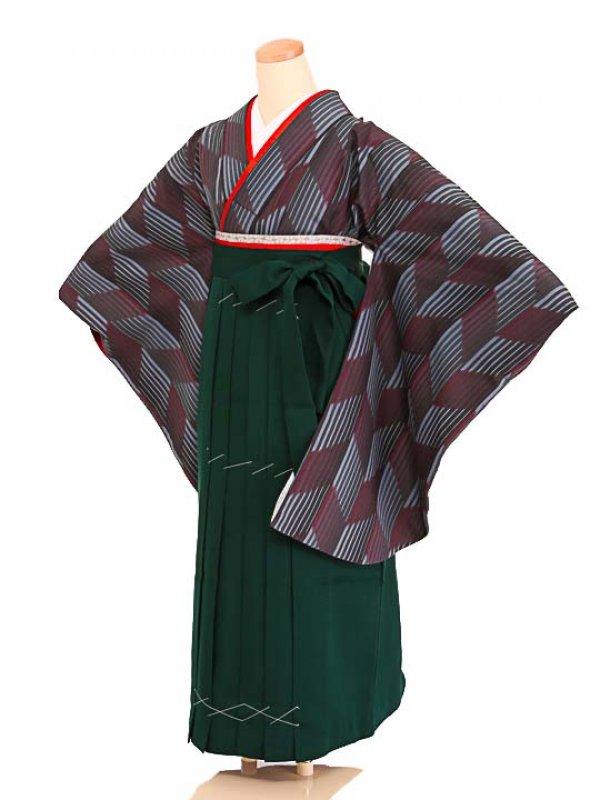 女袴s068グレー地に矢絣/緑無地