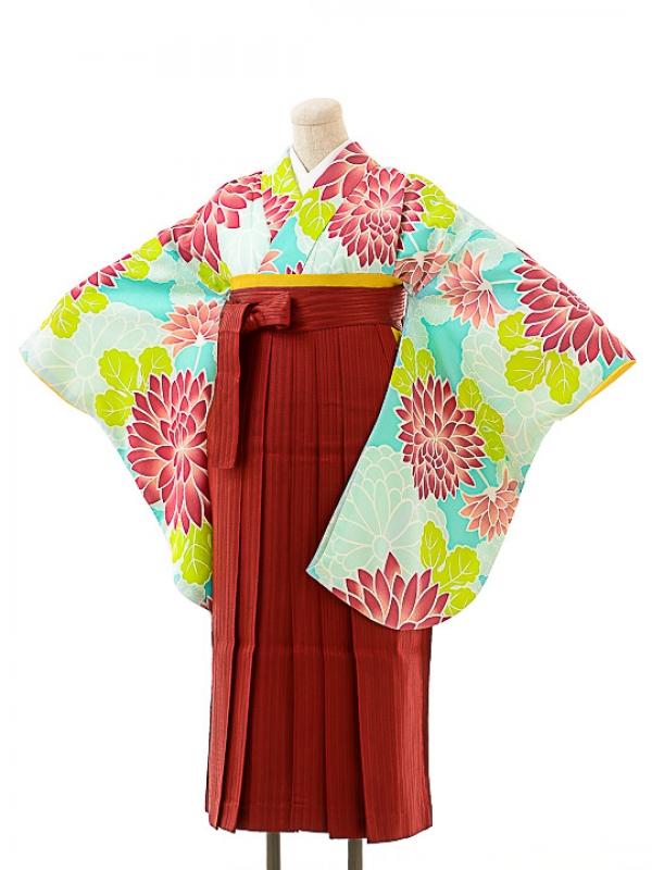 女袴s159京かいらしアクアグリーン/エンジ縞袴