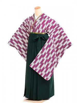 女袴s079紫矢絣/緑無地