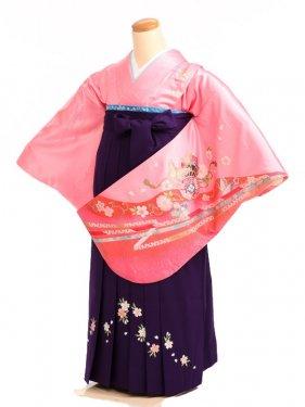 女袴s048ピンク地に鼓と熨斗/紫桜刺繍入り