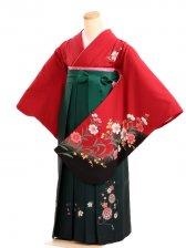 女袴s010赤地に花/緑ぼかし花柄