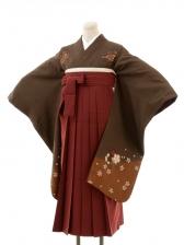 正絹女袴s134緑褐色地に花散らし/エンジ無地