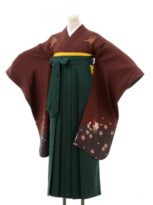 正絹女袴s126小豆色地に花散らし/緑無地袴