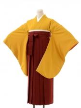 先生,教員向け袴レンタルs148/卒園式,卒業式