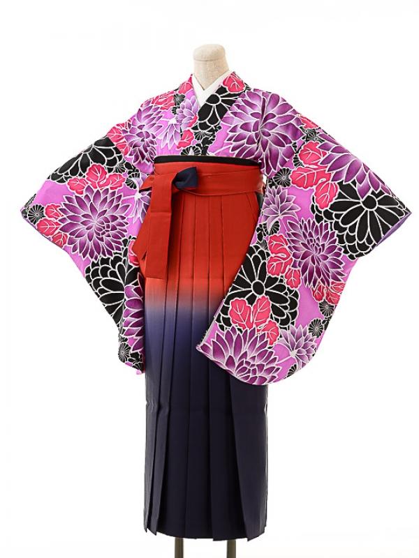 女袴s161京かいらし紫/エンジぼかし袴