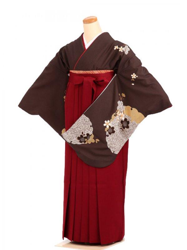 女袴s039黒茶地に大雪輪/エンジ無地