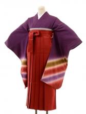 正絹女袴s133虹紫/エンジストライプ袴