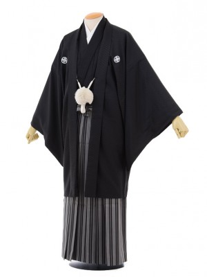卒業式成人式袴レンタル151黒紋付×kansai黒縞