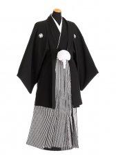 卒業式成人式袴男レンタル087*2/黒紋付/黒銀縞