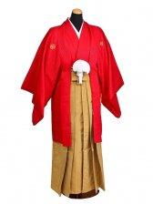 卒業式成人式袴男レンタル054*2/赤誠/黄金縞袴
