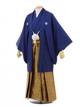 卒業式成人式袴レンタル158紺紋付×ゴールド袴