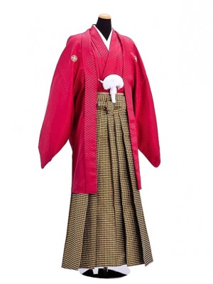 卒業式成人式袴男レンタル017*6/エンジ紋付/格子