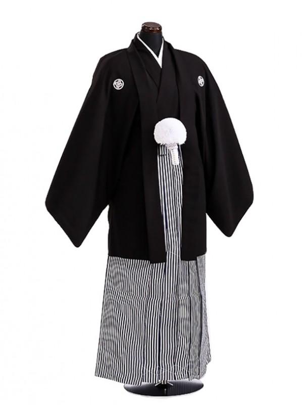 卒業式成人式袴男レンタル077*3/黒紋付/濃紺縞