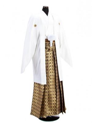 卒業式成人式袴男レンタル028*6/白紋付/金若松