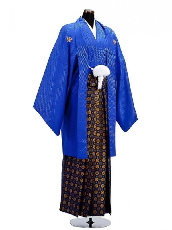 卒業式成人式袴男レンタル013*7/青/金三ツ割り菊