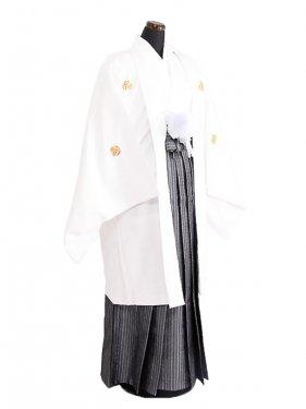 卒業式成人式袴男レンタル079*8白紋付/濃紺流紋