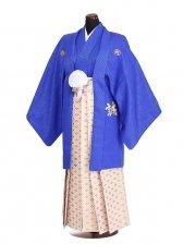 卒業式成人式袴男レンタル065*3/青誠/金四ツ目菱