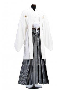 卒業式成人式袴男レンタル018*6/白/濃紺子持縞