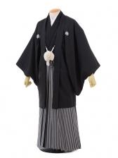 卒業式成人式袴レンタル178黒紋付×紺シルバー袴