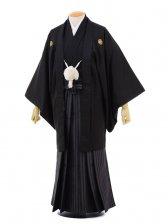 卒業式成人式袴レンタル176黒金刺繍寿×茶グレー