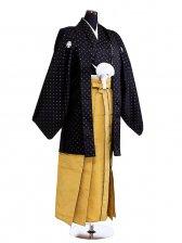 卒業式成人式袴男レンタル051*4/黒/黄金縦縞袴