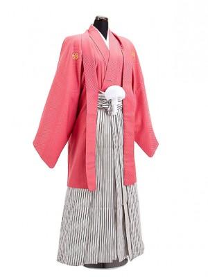 卒業式成人式袴男レンタル035*5ローズピンク/黒銀縞