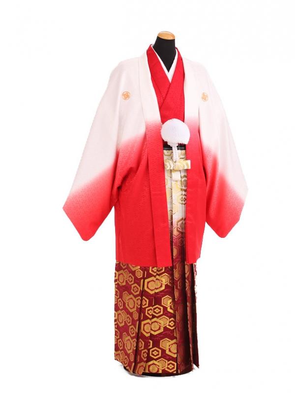 卒業式成人式袴レンタル198赤ぼかし紋付×赤金