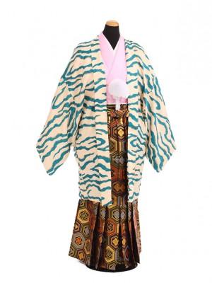 卒業式成人式袴レンタル203ブルー虎柄×ゴールド亀