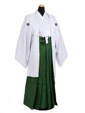 卒業式成人式袴男レンタル052*4/白刺子/深緑縞