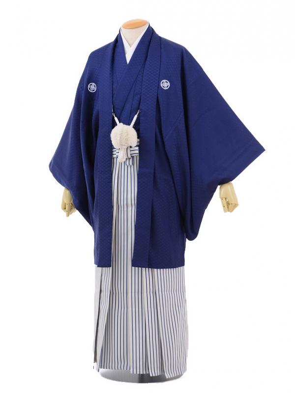 卒業式成人式袴レンタル159紺紋付×白紺シルバー縞