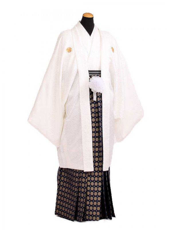 卒業式成人式袴男レンタル107*9/白紋付/金若杉