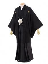 卒業式成人式袴レンタル175黒金刺繍絆×茶グレー