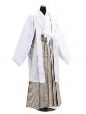 卒業式成人式袴男レンタル030*8/白刺子/紺金縞