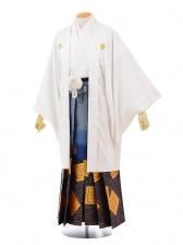 卒業式成人式袴レンタル146白紋付×ブルーゴールド