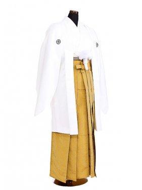 卒業式成人式袴男レンタル049*6/白/黄金縦縞袴