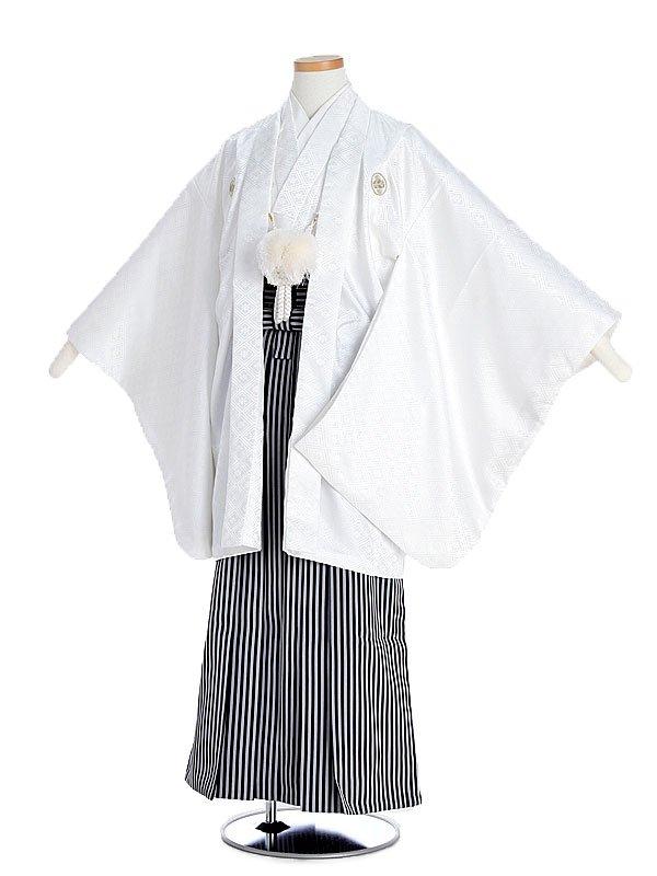 ジュニア男児白紋付×縞袴wm10