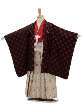 七五三(5男袴)5103 ひさかたろまん 赤水玉