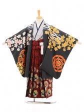 753レンタル(5歳男袴)5120 花わらべ 虎に桜
