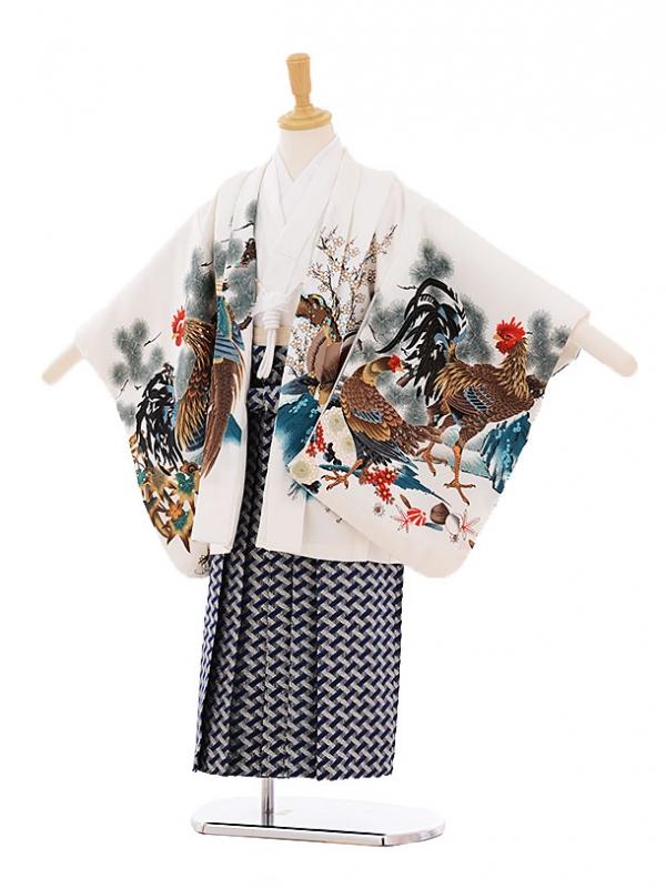 七五三レンタル(5歳男の子袴)5268白地尾長鳥鷹